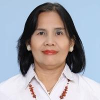 Ir. Nurhayati Aritonang, M.T.